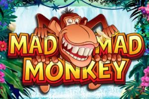 Mad Mad Monkey Mobile Slot by NextGen