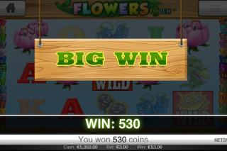 Flowers Touch Big Win