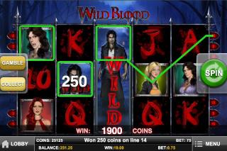 Wild Blood Wild Feature