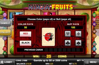 Ninja Fruits Gamble Feature