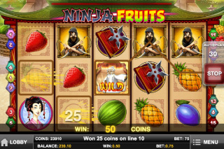 Ninja Fruits Mobile Slot Screenshot