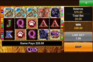 Cats Mobile Slot Screenshot