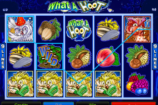 What A Hoot Mobile Slot Win