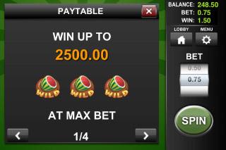 Wild Melon Classic Slot Max Bet Win
