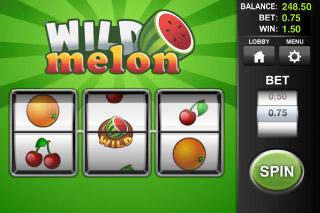 Wild Melon Classic Slot Screenshot