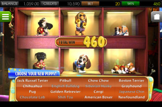 Puppy Love Mobile Slot Pick Me