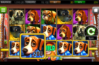 Puppy Love Mobile Slot Screenshot