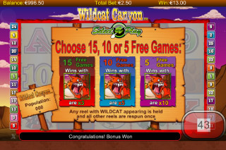 Wildcat Canyon Mobile Slot Free Spins