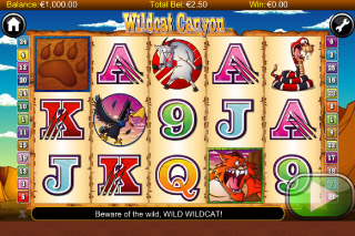 Wildcat Canyon Mobile Slot Screenshot