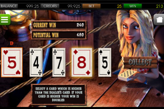More Gold Diggin' Mobile Slot Gamble Feature