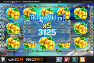 Winterberries Mobile Slot Big Win