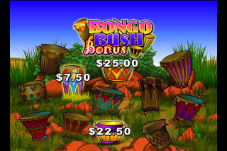 Bush Telegraph Mobile Slot Bongo Bush Bonus