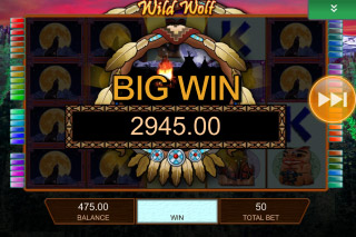 Wild Wolf Mobile Slot Big Win