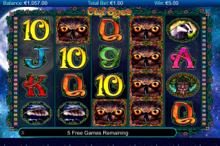 Owl Eyes Mobile Slot Stacked Wilds