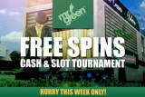 Grab Your Free Slot Spins this October 2014
