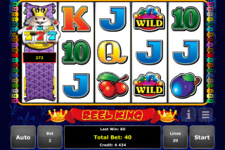 Reel King Mobile Slot Wilds