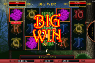 Robyn Mobile Slot Big Win