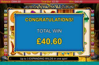Genie Wild Free Spins Win