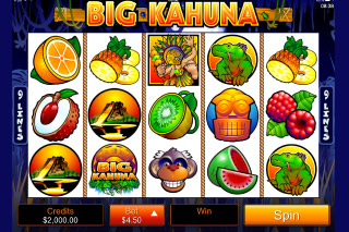 Big Kahuna Mobile Slot Screenshot