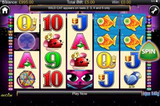 Miss Kitty Mobile Slot Screenshot
