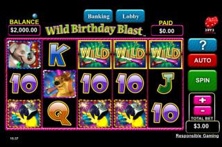 Wild Birthday Blast Screenshot