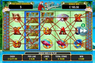 Aloha Island Mobile Slot Winning Lines