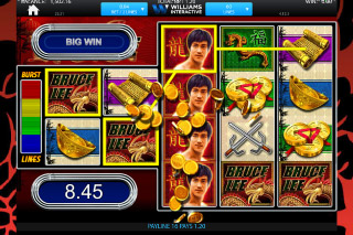 Bruce Lee Slot Win