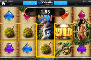 Amazon Queen Mobile Slot Wilds & Reels