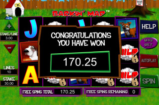 Barkin Mad Mobile Slot Big Win
