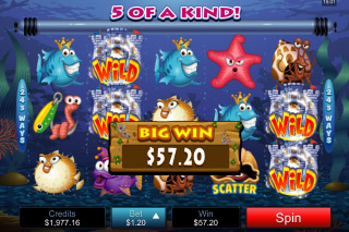 Fish Party Mobile Slot Big Win