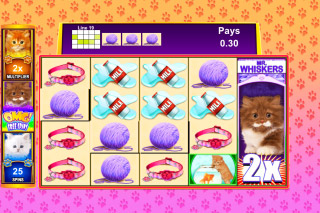 OMG Kittens Mobile Slot Bonus Game