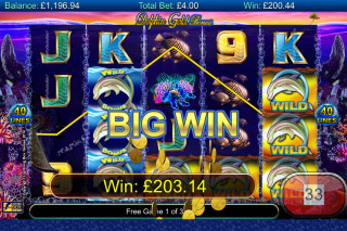 Dolphin Gold Slot Big Win