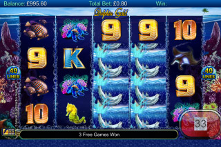 Dolphin Gold Mobile Slot Reels