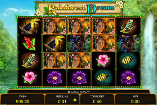 Rainforest Dream Mobile Slot Symbols