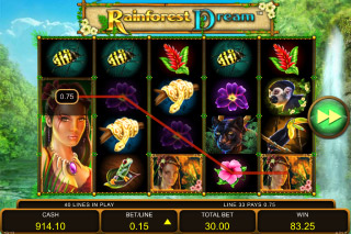 Rainforest Dream Mobile Slot Win
