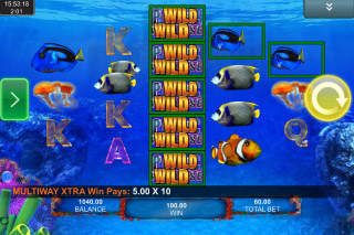 Pacific Paradise Mobile Slot Wilds