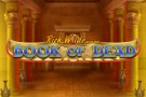 Book of Dead Mobile Slot Logo
