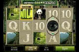 Untamed Giant Panda Mobile Slot Reels