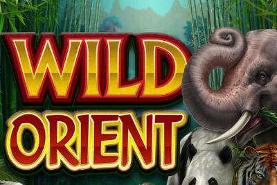 Wild Orient Mobile Slot Logo