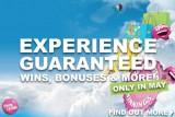 Experience Guaranteed Wins, Casino Bonuses & More