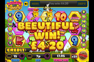 Double Your Honey Mobile Slot Win