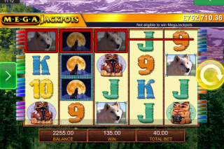 MegaJackpots Wolf Run Mobile Slot Reels