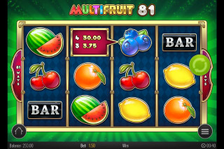 Multifruit 81 Mobile Slot Machine