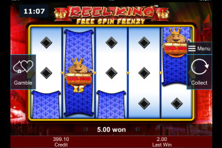 Reel King Free Spin Frenzy Free Spins Bonus