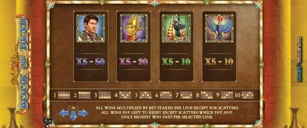 Book of Dead Slot Tournament Points System