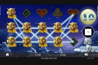 Wolf Cub Mobile Slot Free Spins Big Win