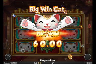 Big Win Cat Mobile Slot Big Win