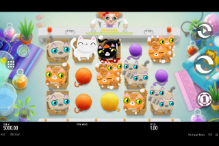 Not Enough Kittens Mobile Slot Machine