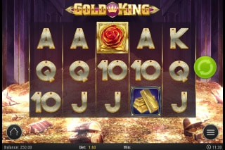 Gold King Mobile Slot Machine