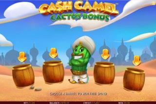 iSoftbet Cash Camel Slot Cactus Bonus Game